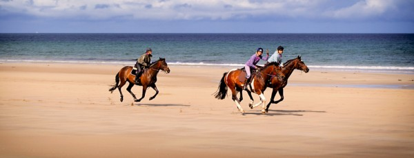 Horses on Reiss Beach