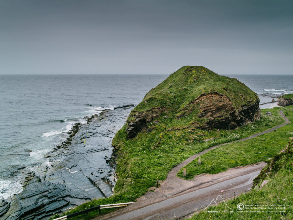 183/365 - Above the South Head (X10)