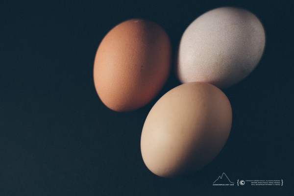 023/365 - Eggs (Sorry, stuck at home)