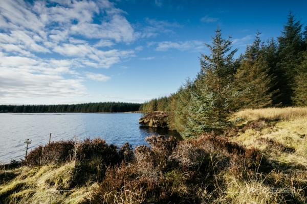 054/365 - A wander round the loch