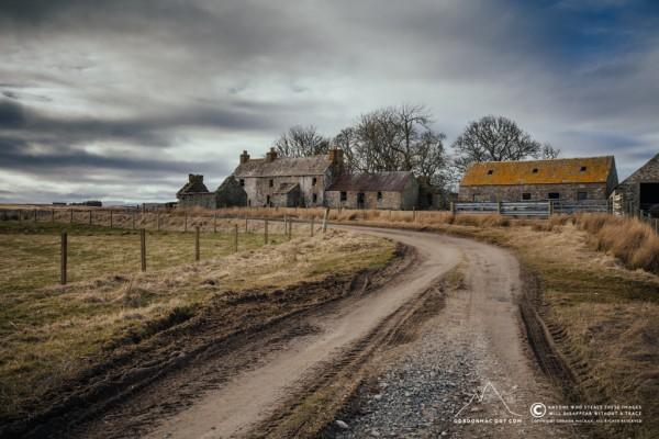 Dalemore Farm