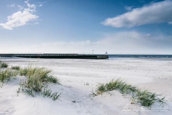 259/365 - Nairn's Sunny East Beach :D