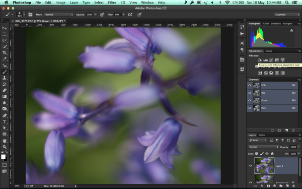 Create a new Adjustment Layer - Vibrance